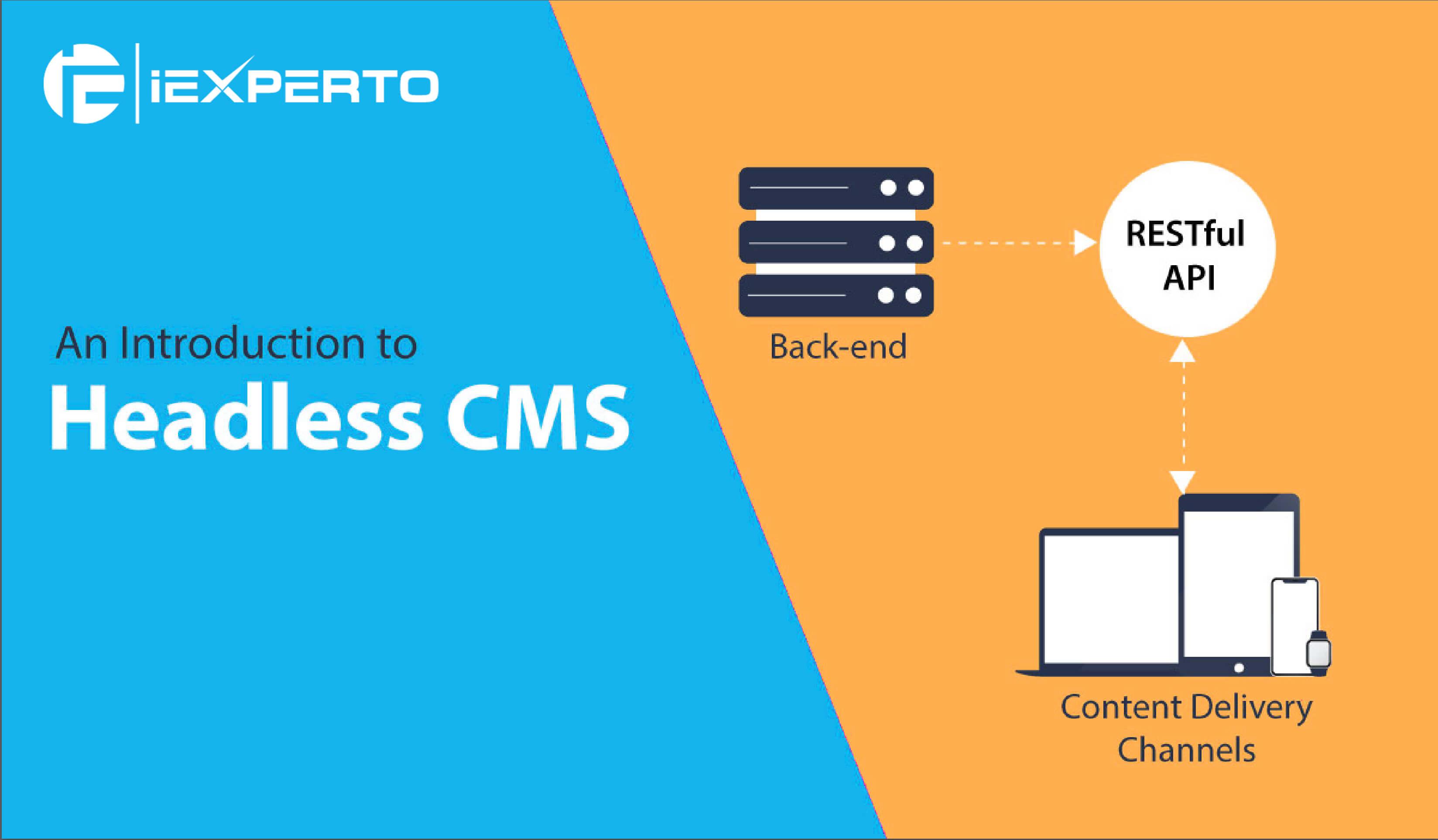 Headless CMS Development Company
